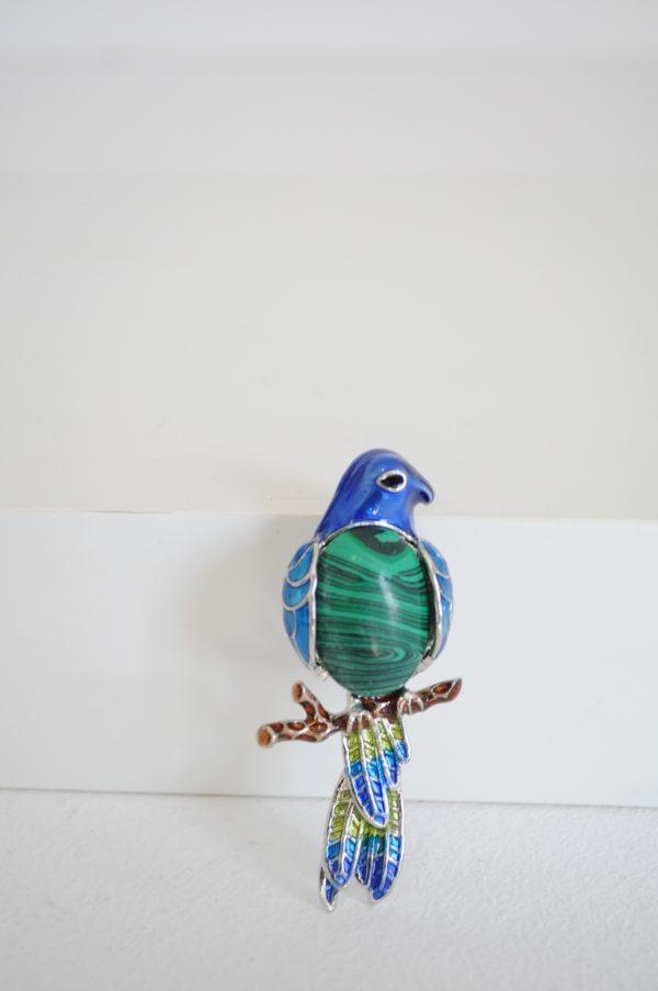 Brosa papagal